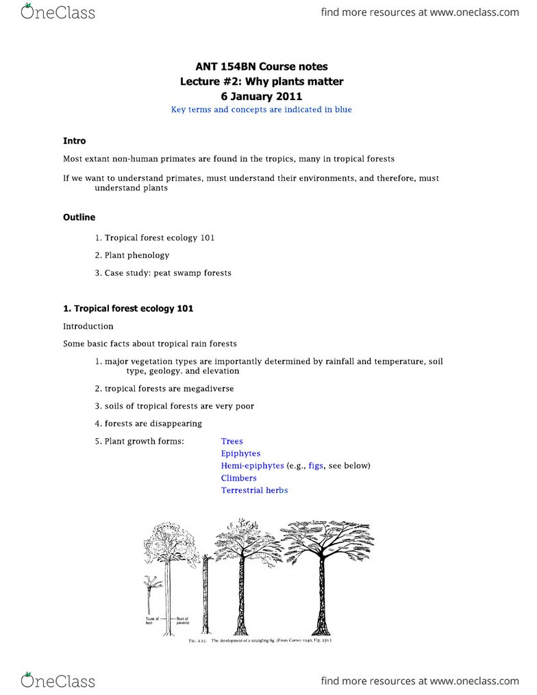 ANT 154A Lecture Notes - Lecture 2: Forest Ecology, Peat Swamp Forest,  Phenology