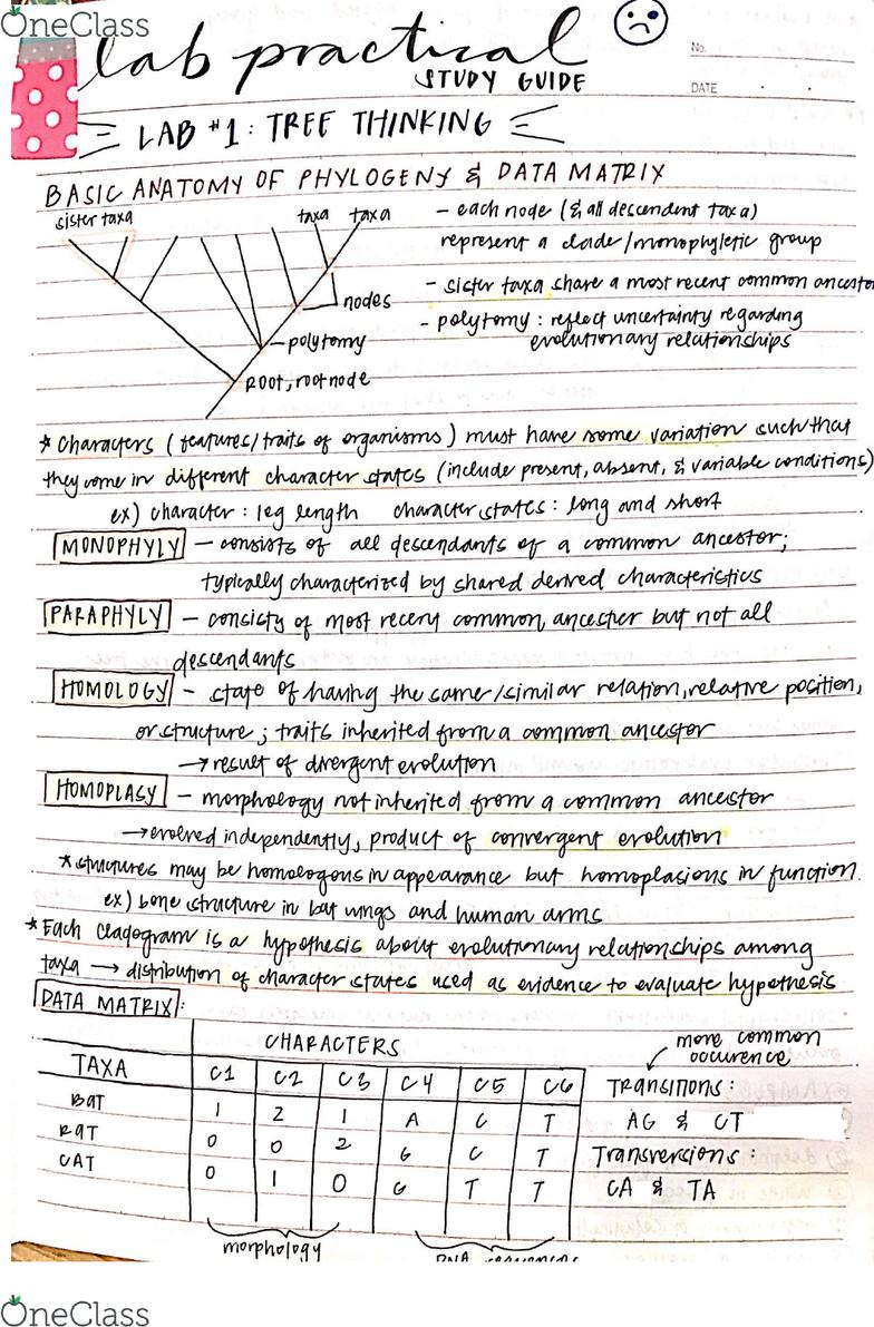 BIS 2C Final: Lab Practical: Lab 1