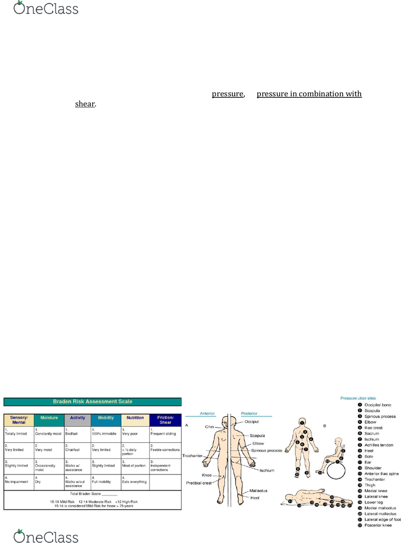NURSE-UN 240 Study Guide - Fall 2018, Midterm - Pressure