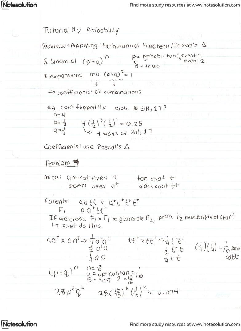 Genetics Tutorial #2 Probability pdf - OneClass