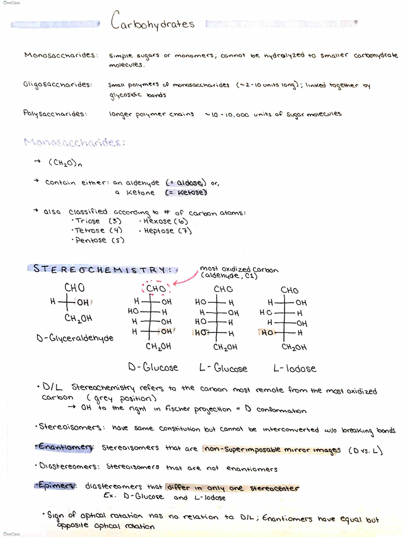 CHEM 313 Final: Carbohydrate Notes