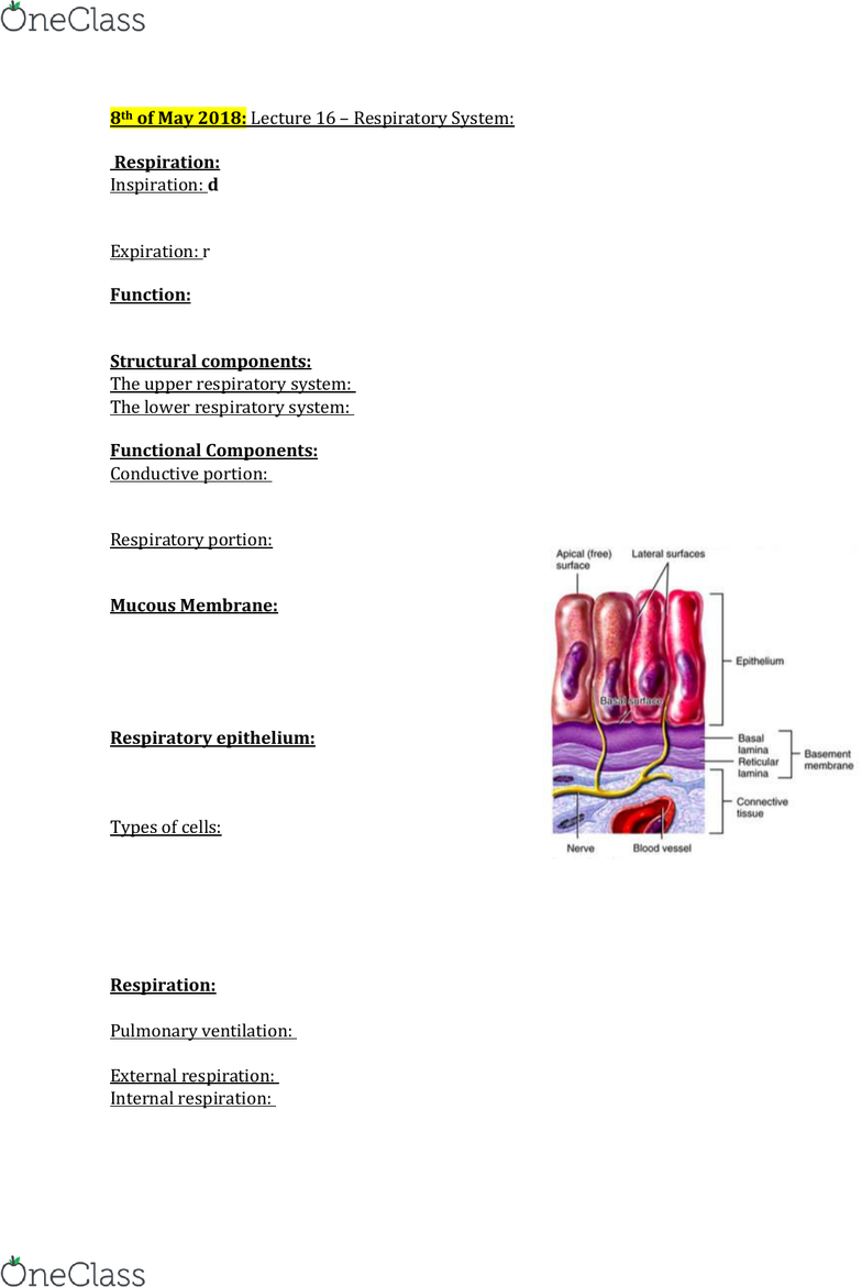 Hlth108 Lecture Notes Spring 2018 Lecture 16 Respiratory