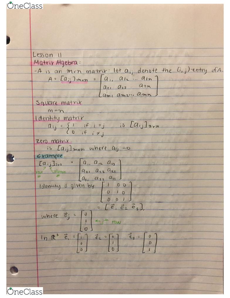 MATH 112 Lecture 11: Matrix algebra, square matrix, identity matrix