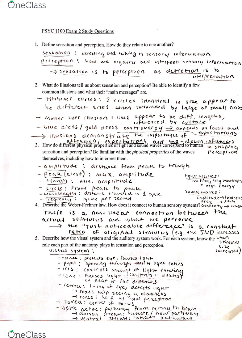 psychology 1100 exam 2