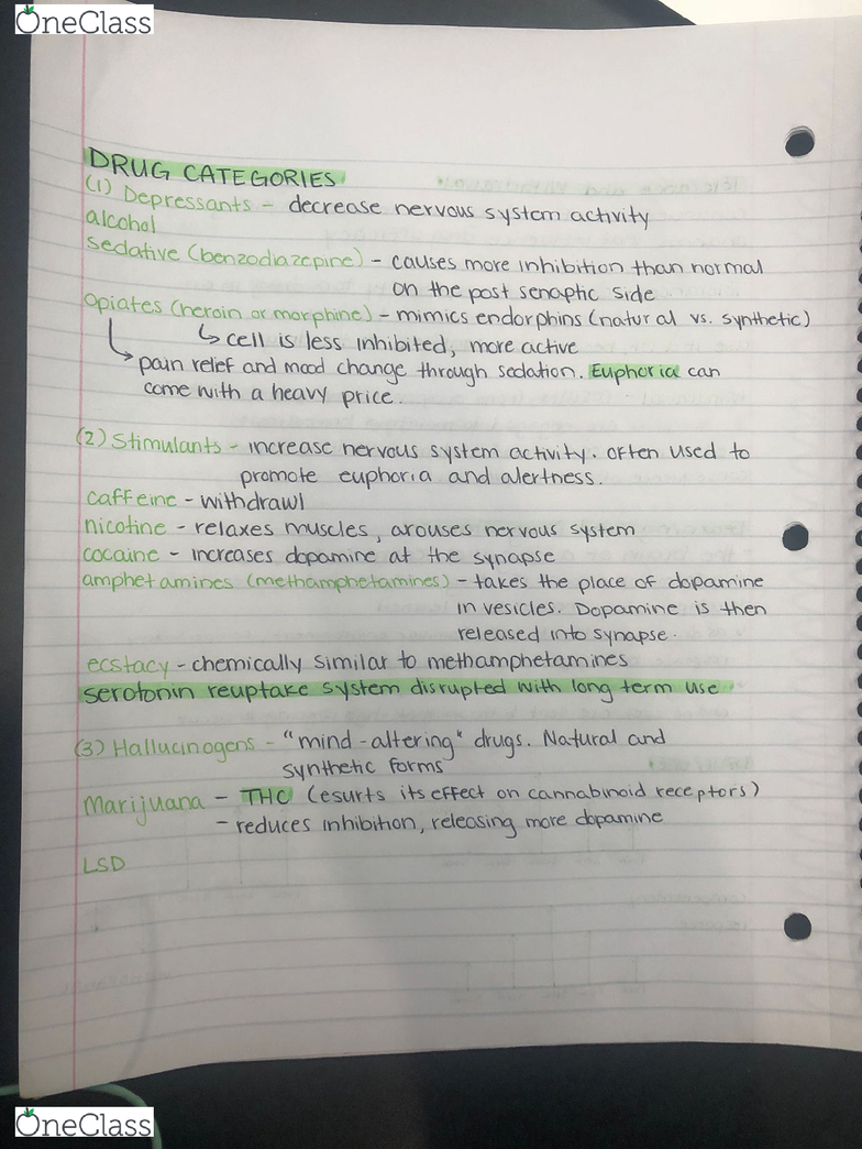 PSYO 1011 Lecture Notes - Lecture 16: Morphine, Hallucinogen, Endorphins