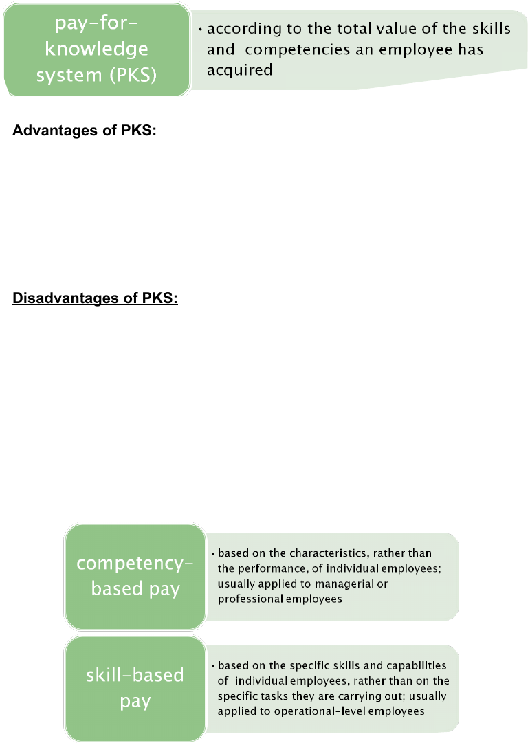advantages and disadvantages of skill based pay systems