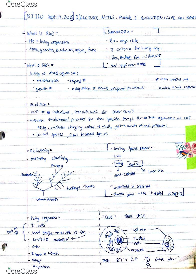 BI 110 Lecture 1: BI 110 lec 1